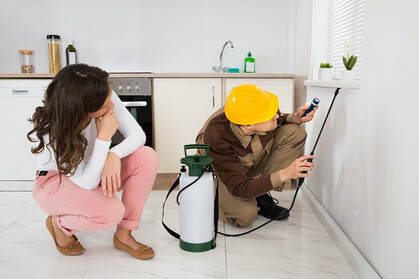 Image result for Emergency Pest Control Caledon